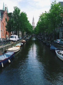 Free stock photo of sea, city, water, street