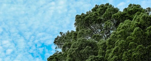 Gratis arkivbilde med himmel, natur, naturskjønn, panorama