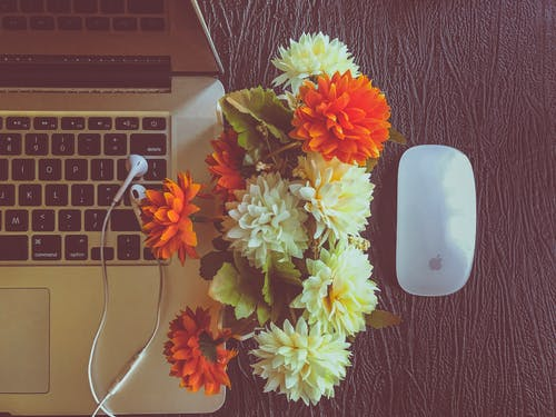 Free stock photo of apple, artificial flowers, beautiful flowers