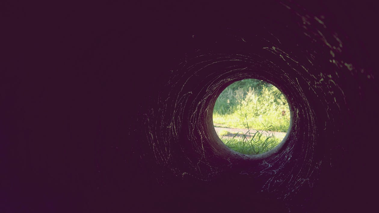 Tunneled Photo of Green Grass