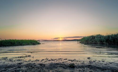 Ingyenes stockfotó alkonyat, ég, folyó, fű témában