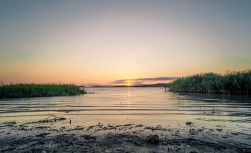 Gratis arkivbilde med daggry, elv, gress
