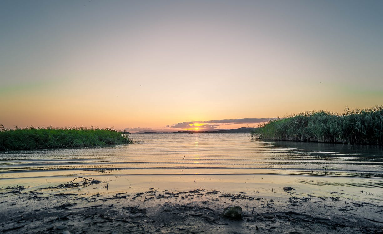 물, 새벽, 일몰