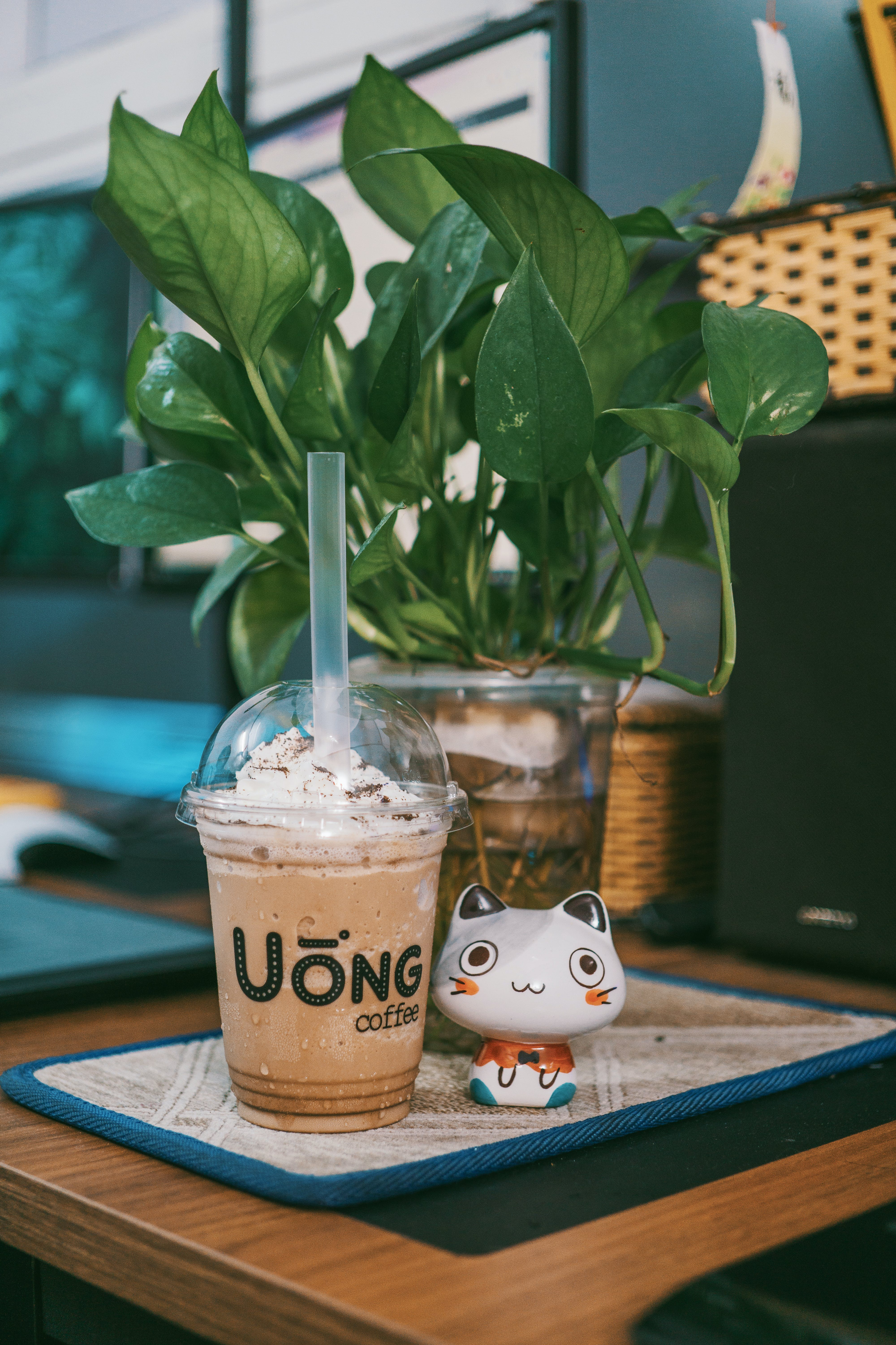 Uong Coffee Disposable Cup Near Cat Figurine on Table