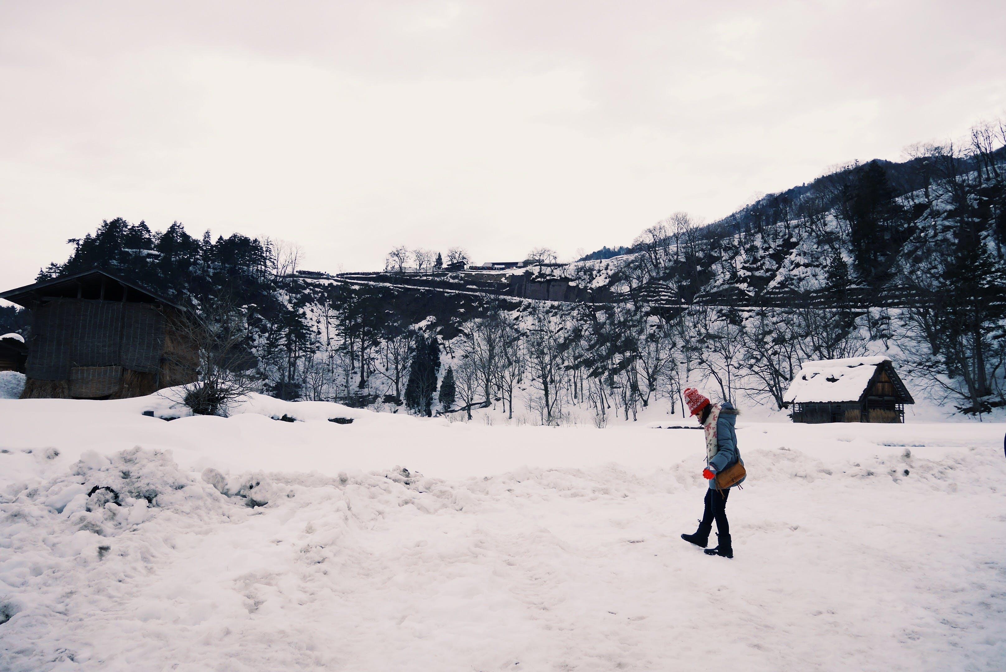Free stock photo of girl, mountain, nature, snow