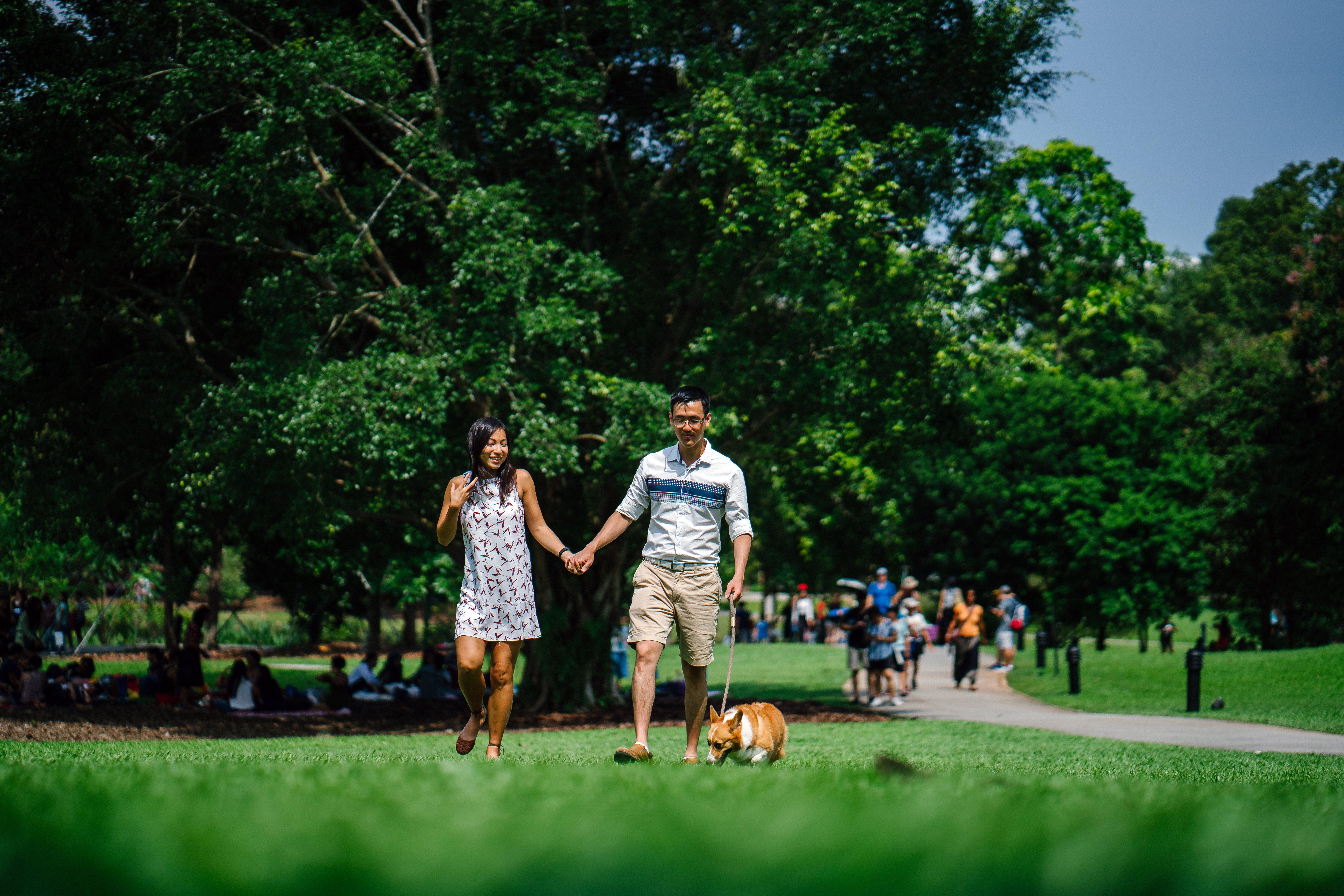 asien: menschen, bäume, gehen