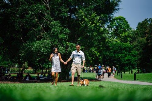Gratis stockfoto met Aziatische mensen, blijdschap, bomen, buitenshuis