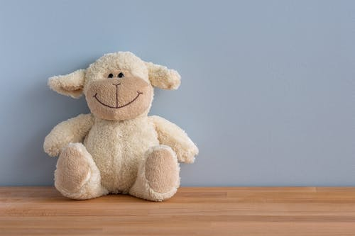 White Sheep Plush Toy