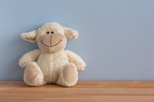 Kostenloses Stock Foto zu fröhlich, lächeln, kuscheltier, spielzeug