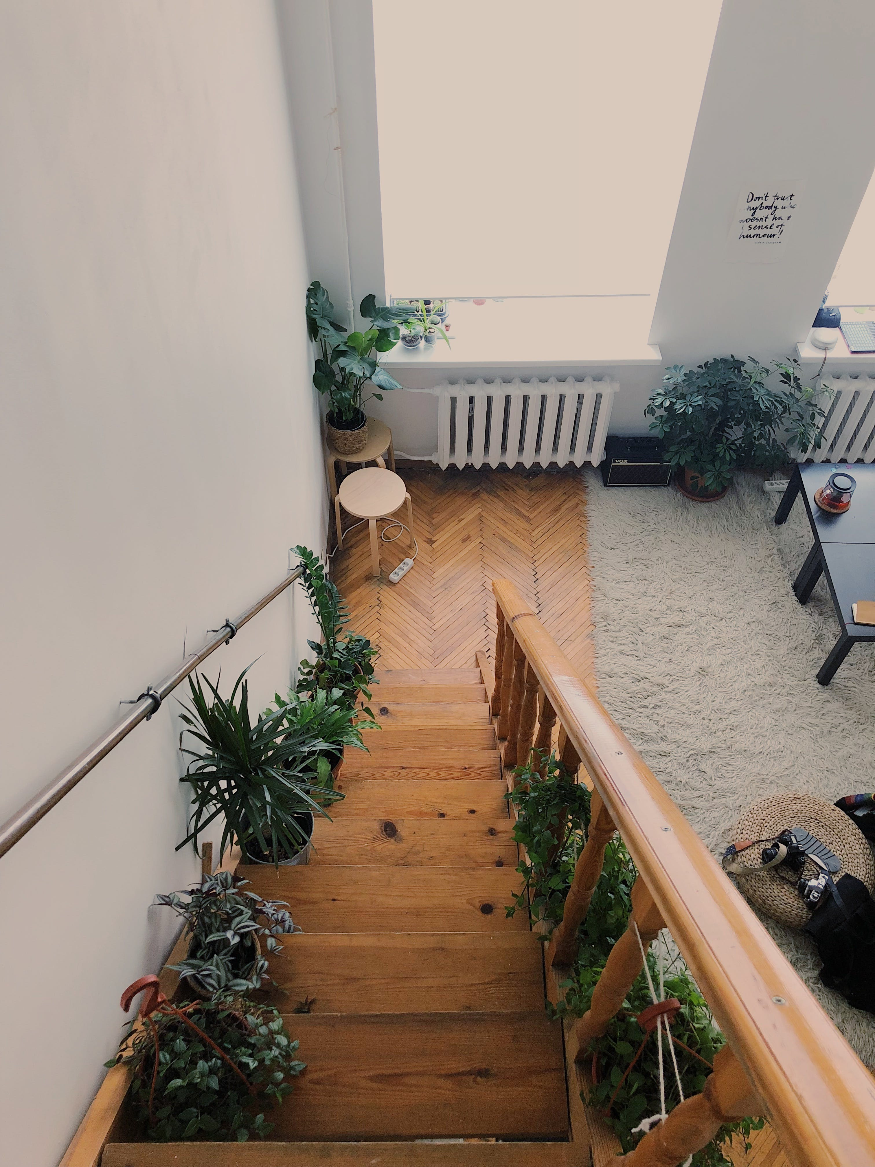 Plants Lined Up On Wooden Stairs