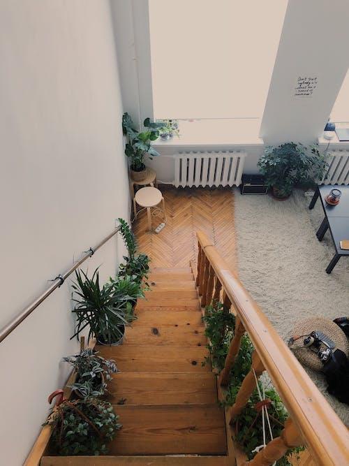Gratis stockfoto met architectuur, binnen, binnenshuis, eigentijds