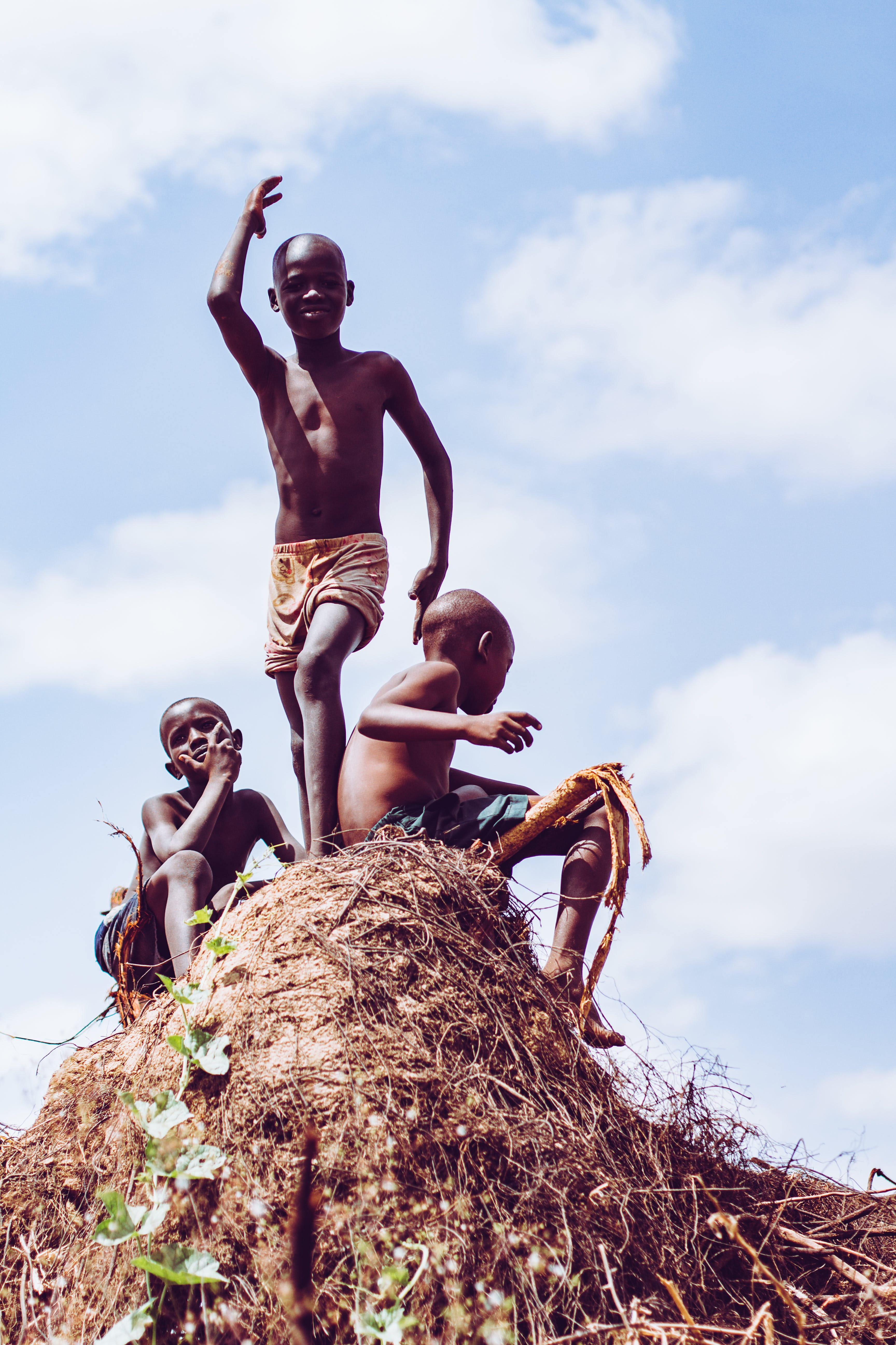 Free stock photo of african, black, green, kids