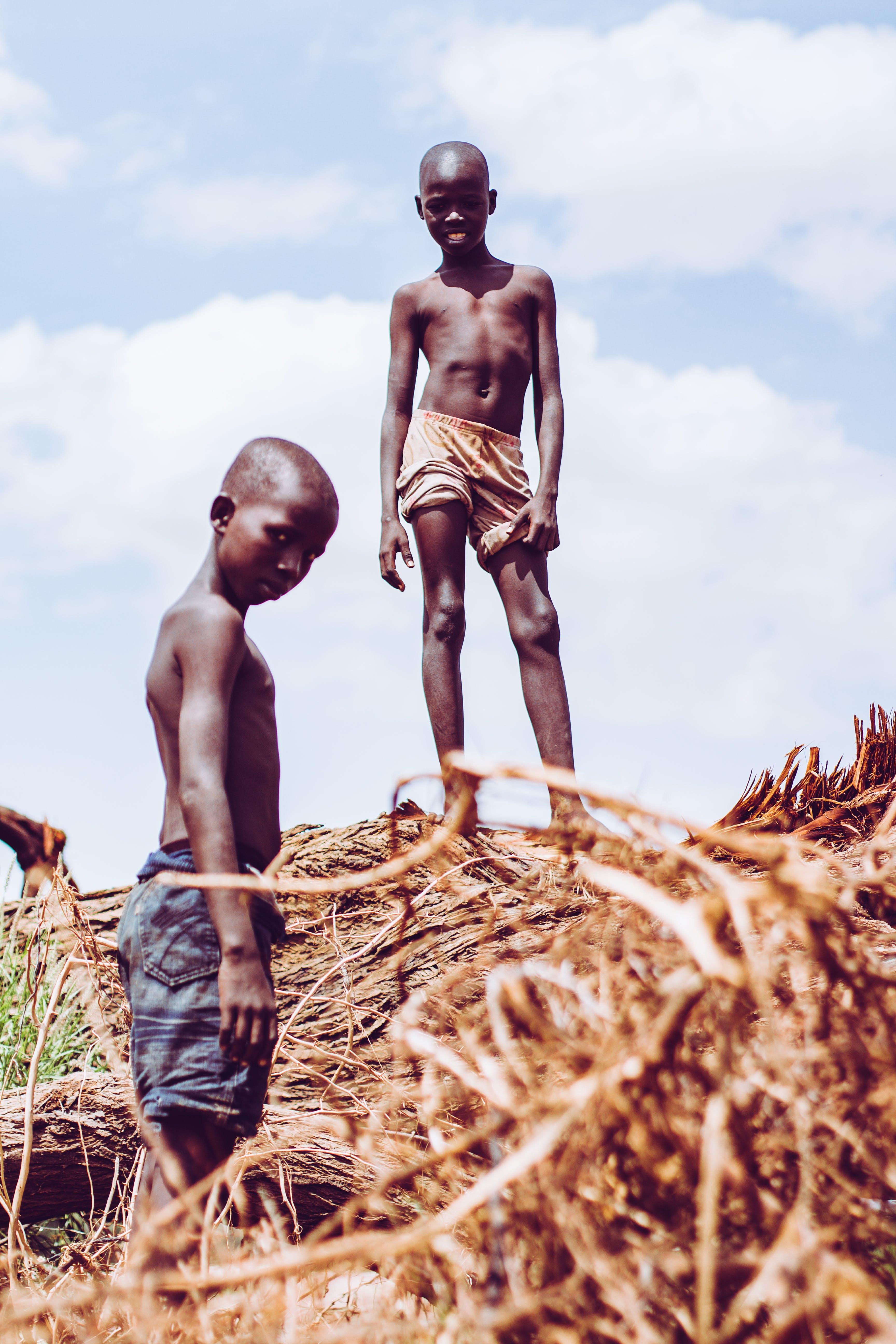 Free stock photo of africa, black, green, kids