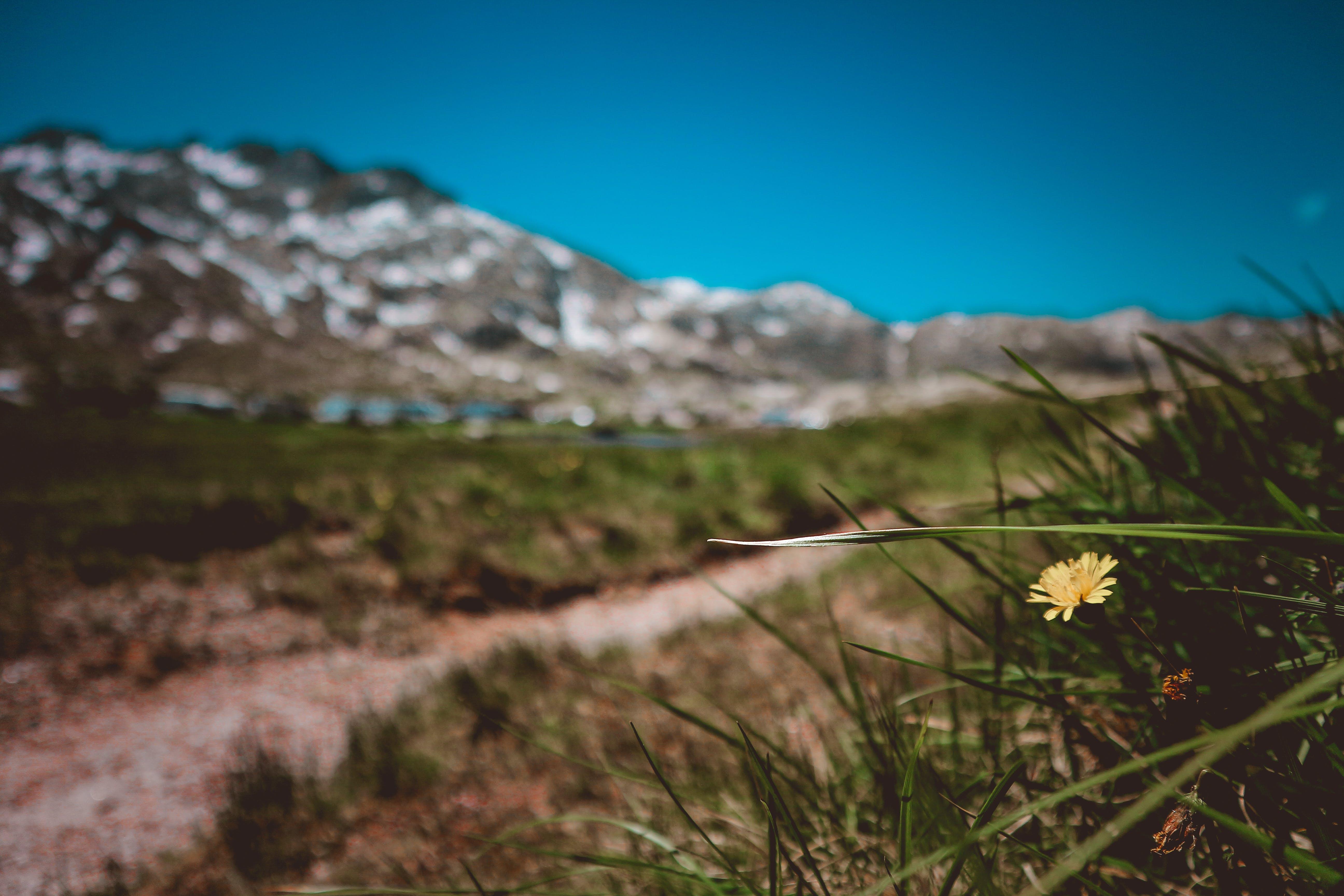 adventure, beautiful, daylight