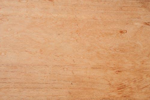 Immagine gratuita di a strisce, albero, arancia, arredamento