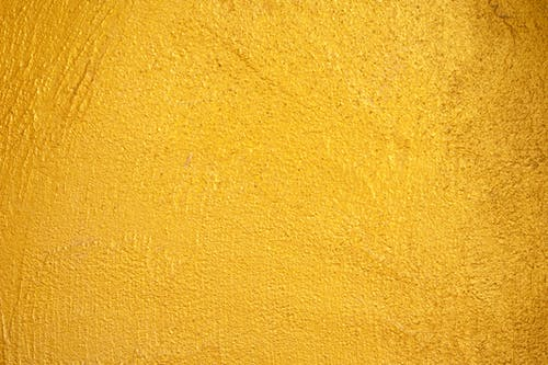 1000 Interesting Yellow Background Photos Pexels Free