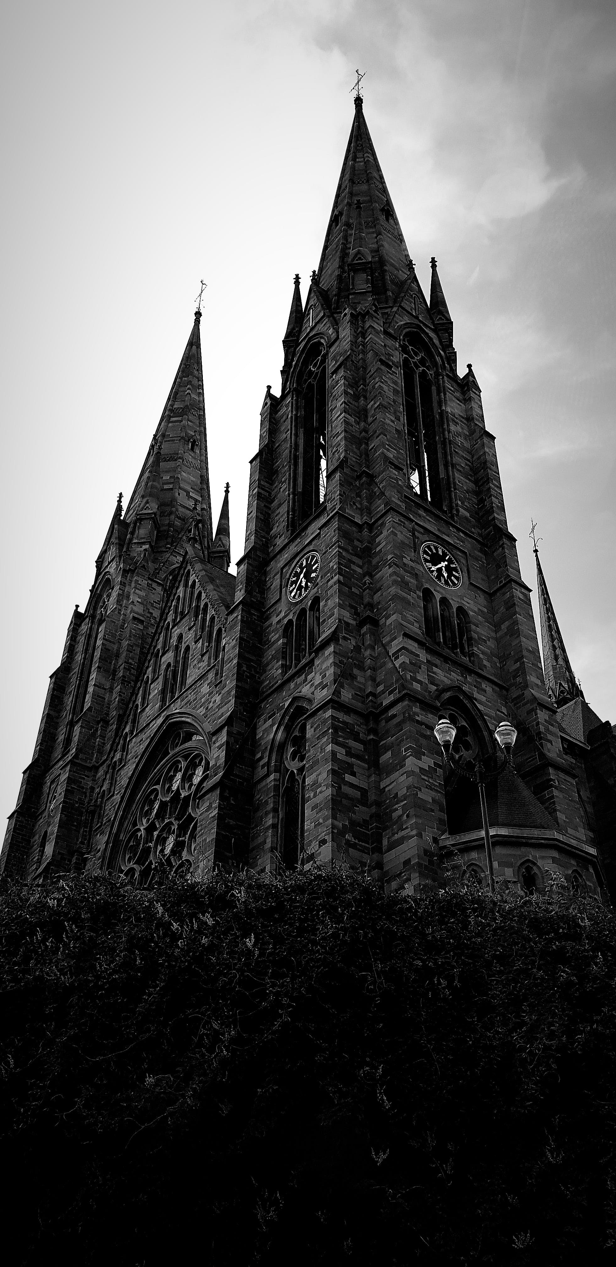 Free stock photo of architecture, black and white, cathedral, mobile