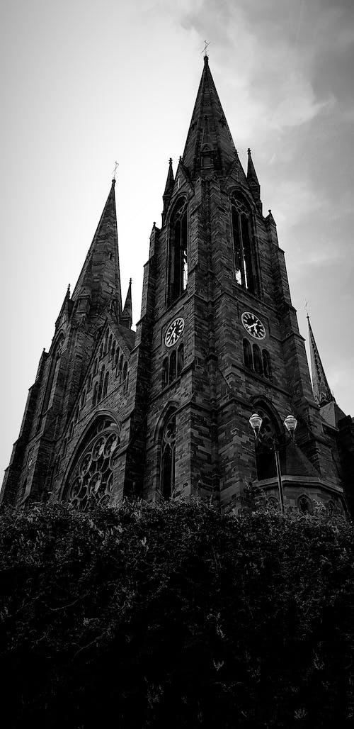 Foto stok gratis Arsitektur, fotografi, hitam dan putih, Katedral