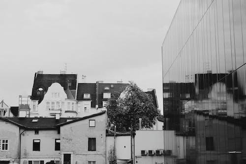 도시, 반사의 무료 스톡 사진