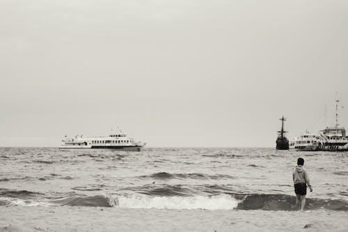바다, 소년의 무료 스톡 사진