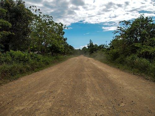 Free stock photo of adventure, blue sky, dirt road, journey