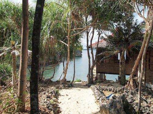 Free stock photo of beach, hidden, Philippines, resthouse