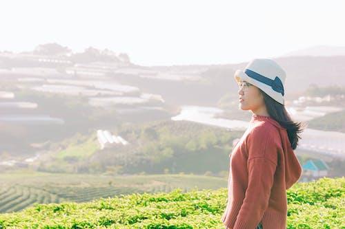Kostnadsfri bild av åkermark, bondgård, fält, flicka