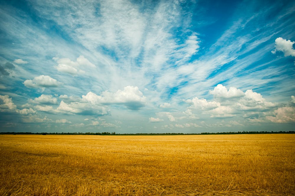 Farm Land @pexels