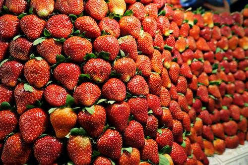Gratis lagerfoto af årstidsbestemt, bær, baggrund, close-up