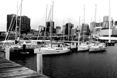 คลังภาพถ่ายฟรี ของ ท่าเรือ, น้ำ, วัน, สะพานเทียบเรือ