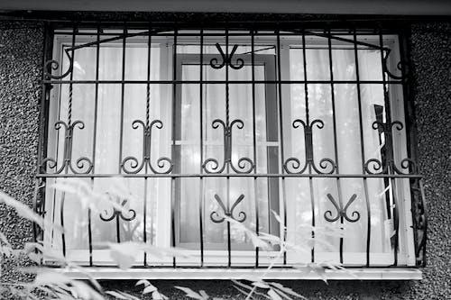 ガラスの窓, 白黒の無料の写真素材