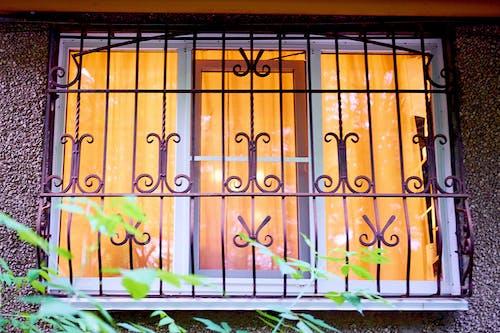 光, 玻璃窗, 綠色 的 免費圖庫相片