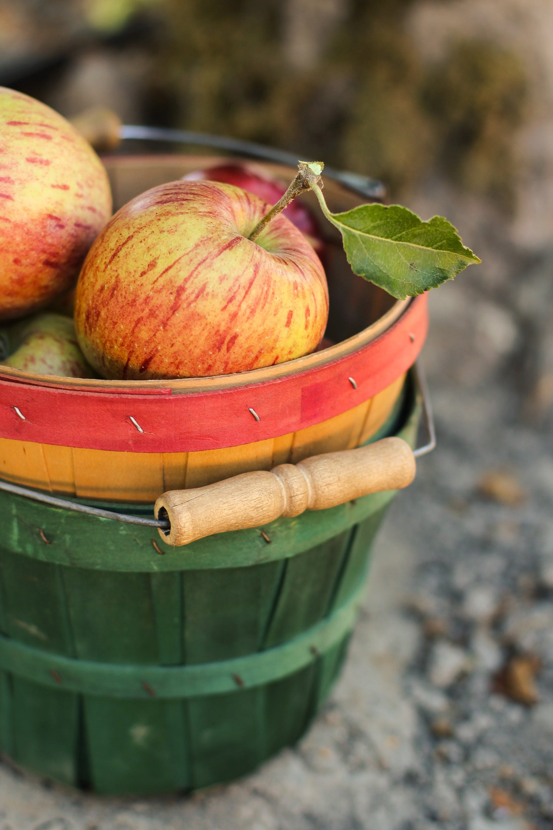 Shallow Focus Photography of Two Ripe Apples on Basket