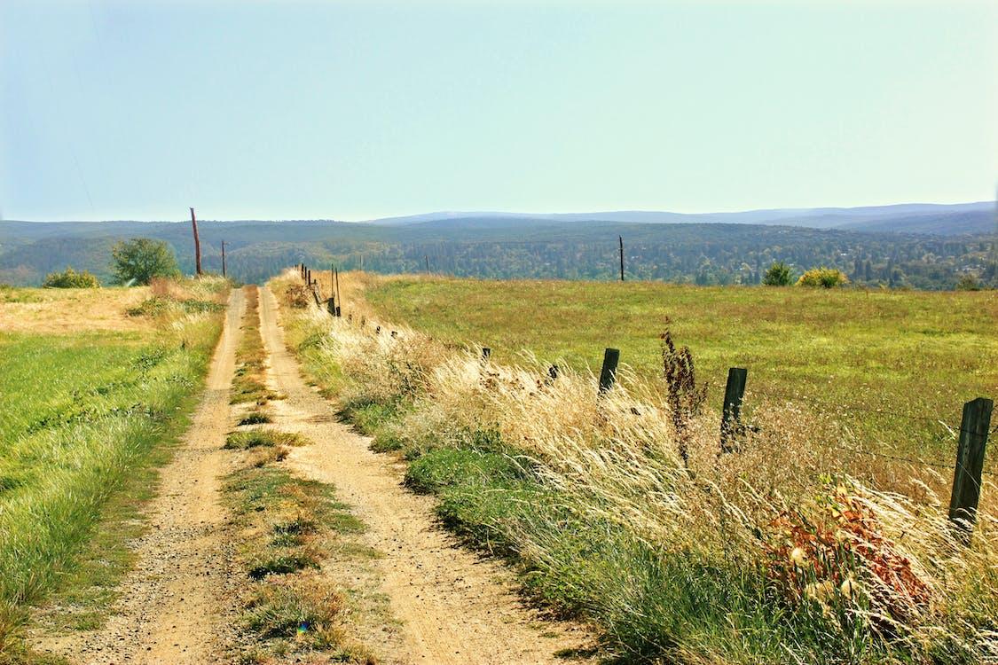 camino, camino de tierra, camino sin asfaltar