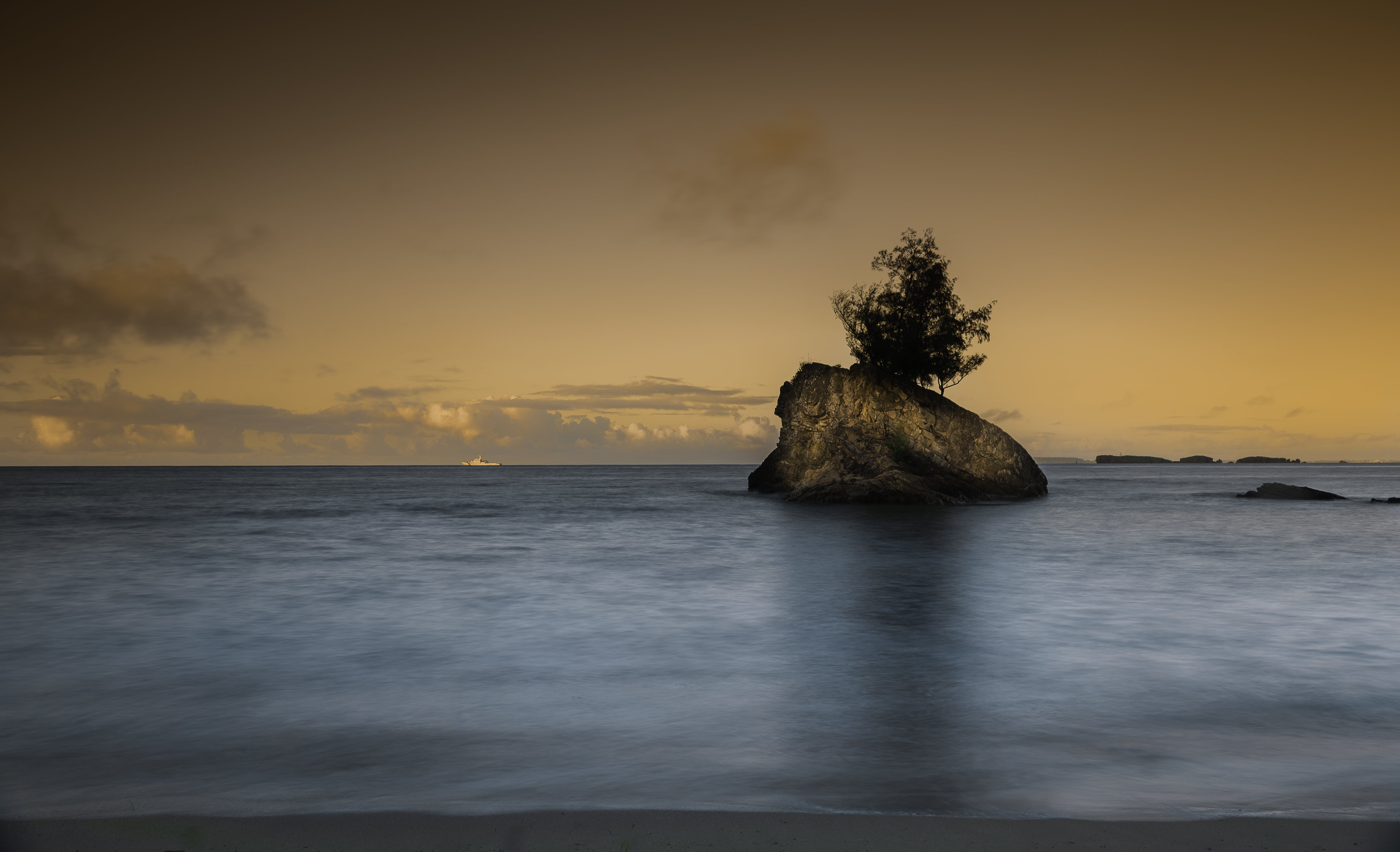 Brown Rock With Tree in the Middle of Ocean