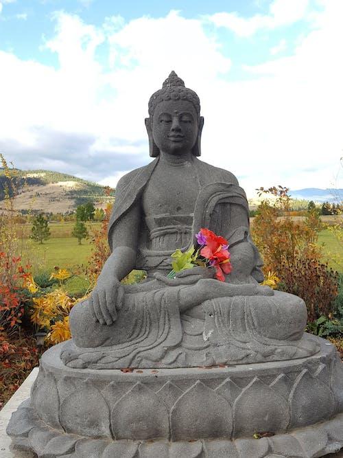 Free stock photo of buddha, peace