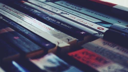 Gratis stockfoto met boeken, geordend, georganiseerd, ingericht