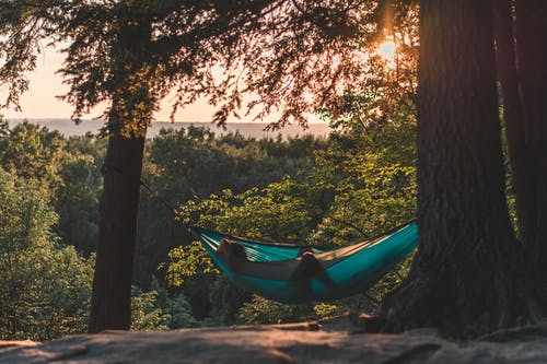 Person Lying on Hammock Between Trees at Daytime