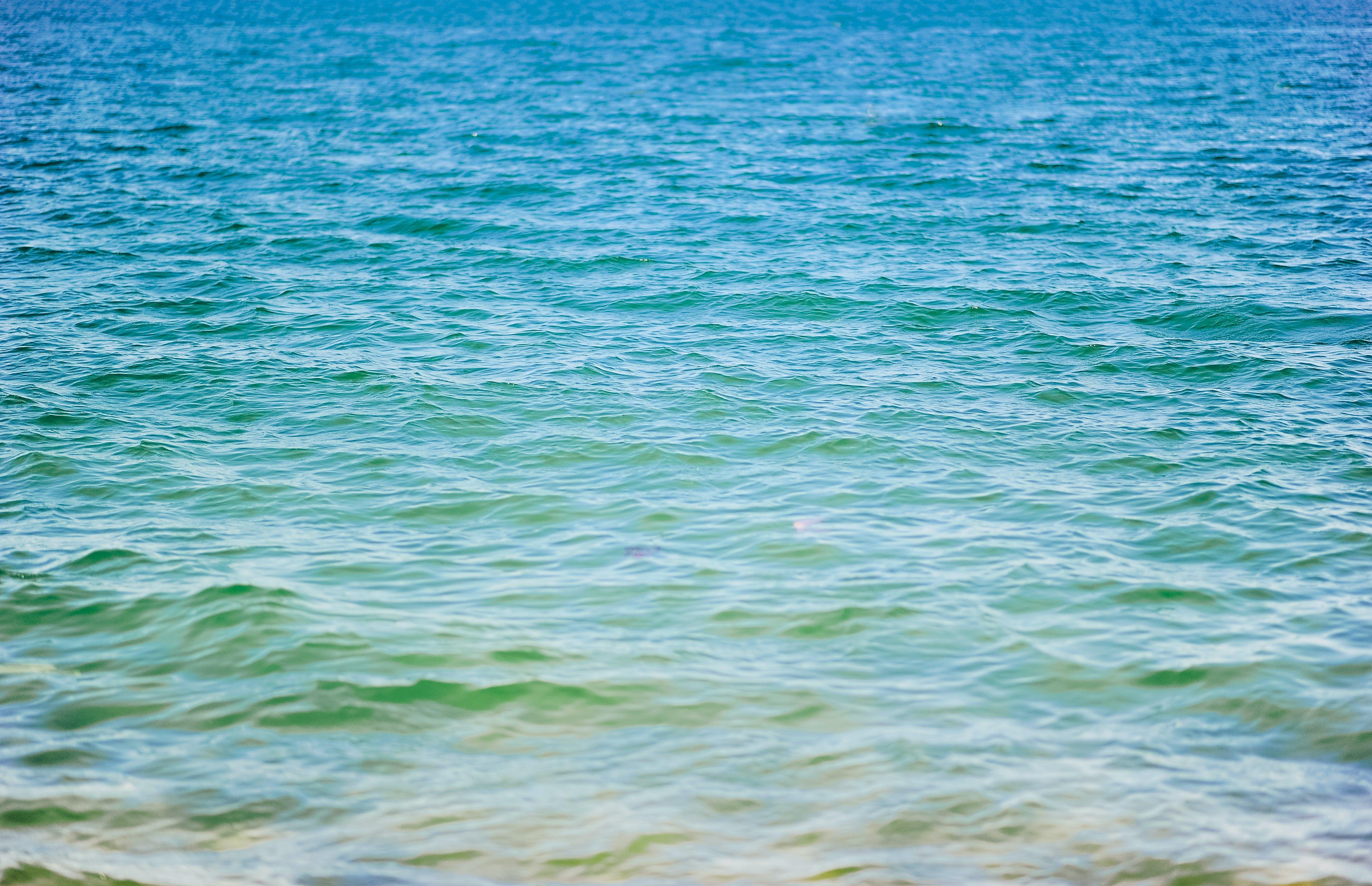 Gratis lagerfoto af bølger, dagtimer, farverig, h2o