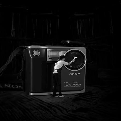 黒、白の無料の写真素材