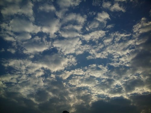 Free stock photo of clouds, day, sunlight