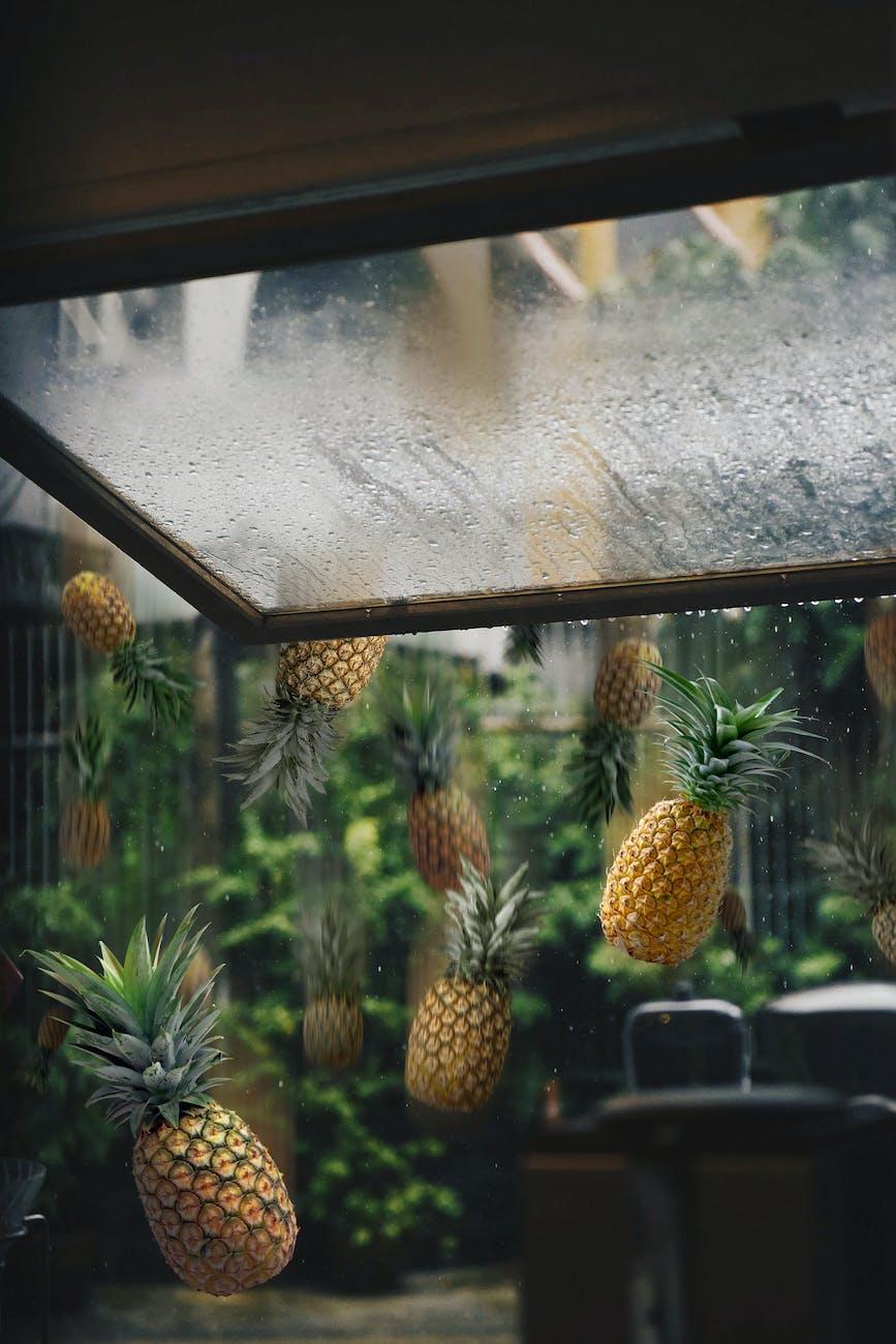 Raining Pineapples (public domain image)