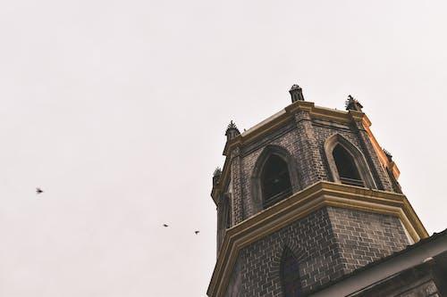 Foto profissional grátis de campanário da igreja com fundo do céu