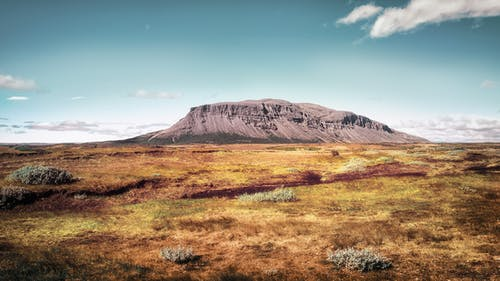 Základová fotografie zdarma na téma denní světlo, hora, kameny, keře