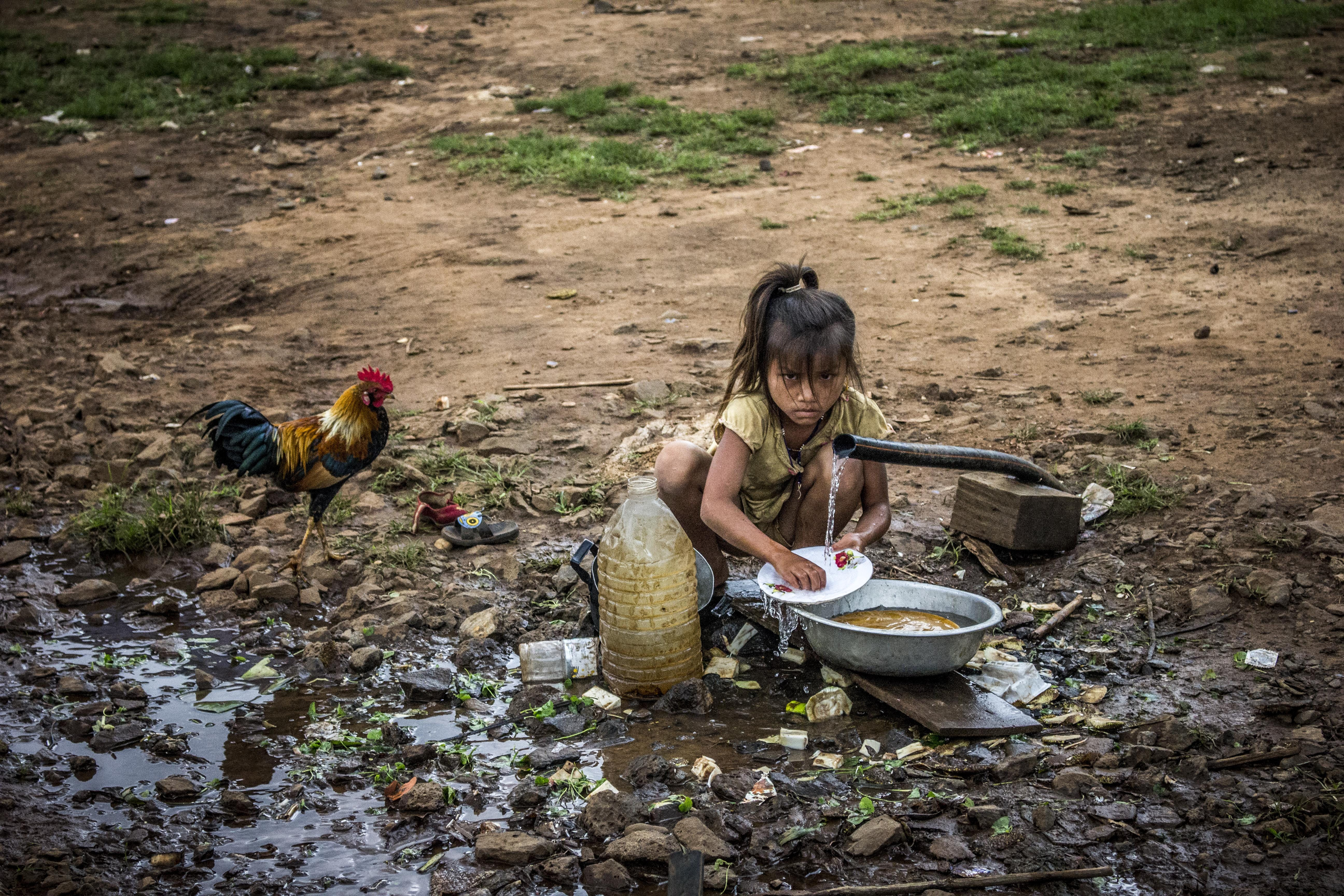 Girl Washing Dish Near Water Flowing Pipe Beside Brown Rooster