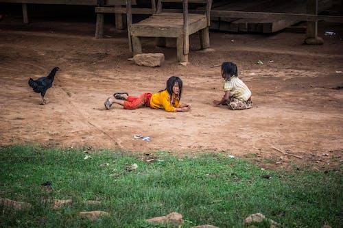 Two Toddler Lying on Brown Flooring Near Black Chicken