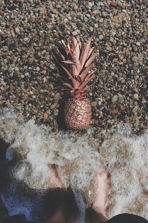 Бесплатное стоковое фото с ананас, вид сверху, вода, волны