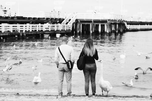 Grayscale Photography of Man and Woman Standing in Front of Swans on Body of Water