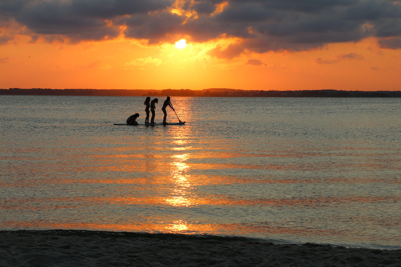 paddleboard, sunset