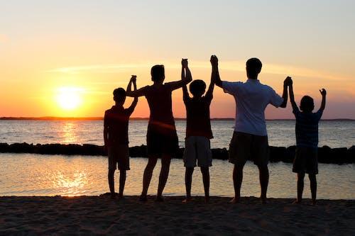 Základová fotografie zdarma na téma držení za ruce, rodina, týmová práce, západ slunce
